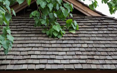 The Pros and Cons of Cedar Shingles